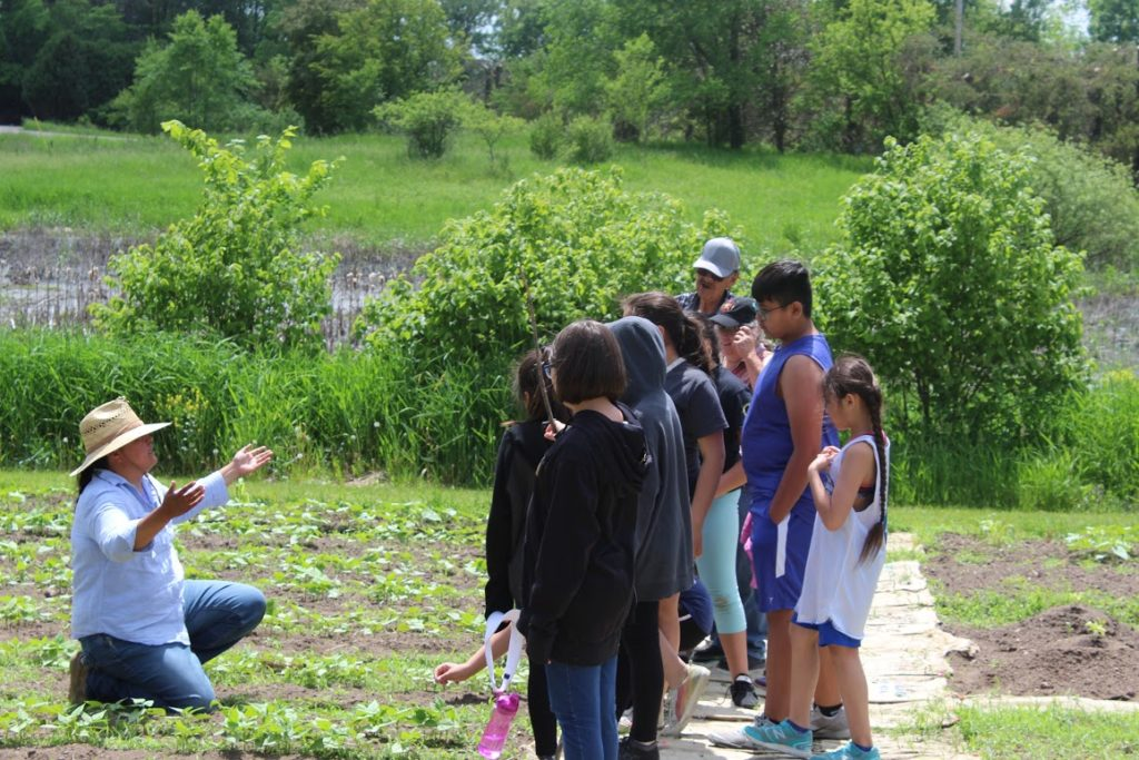 DWH Seedkeeper and Seed Regeneration Manager, Jessika Greendeer, is pictured here teaching Cora's Kids in the DWH Seed Garden.