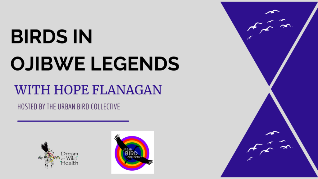 Birds in Ojibwe Legends with Hope Flanagan