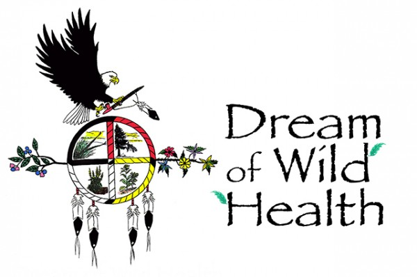 Copy of dream-of-wild-health-logoSmaller-600x398